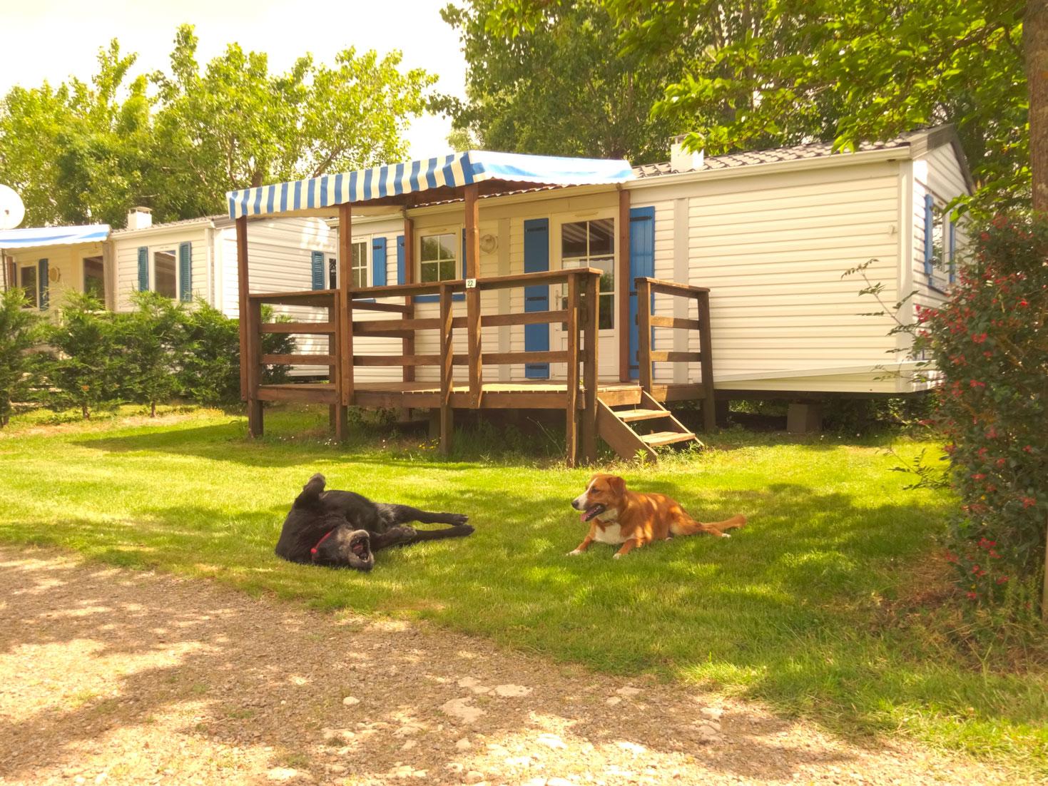 galerie-photos-mobil-home-camping-3-etoiles-vendee-le-port-de-moricq