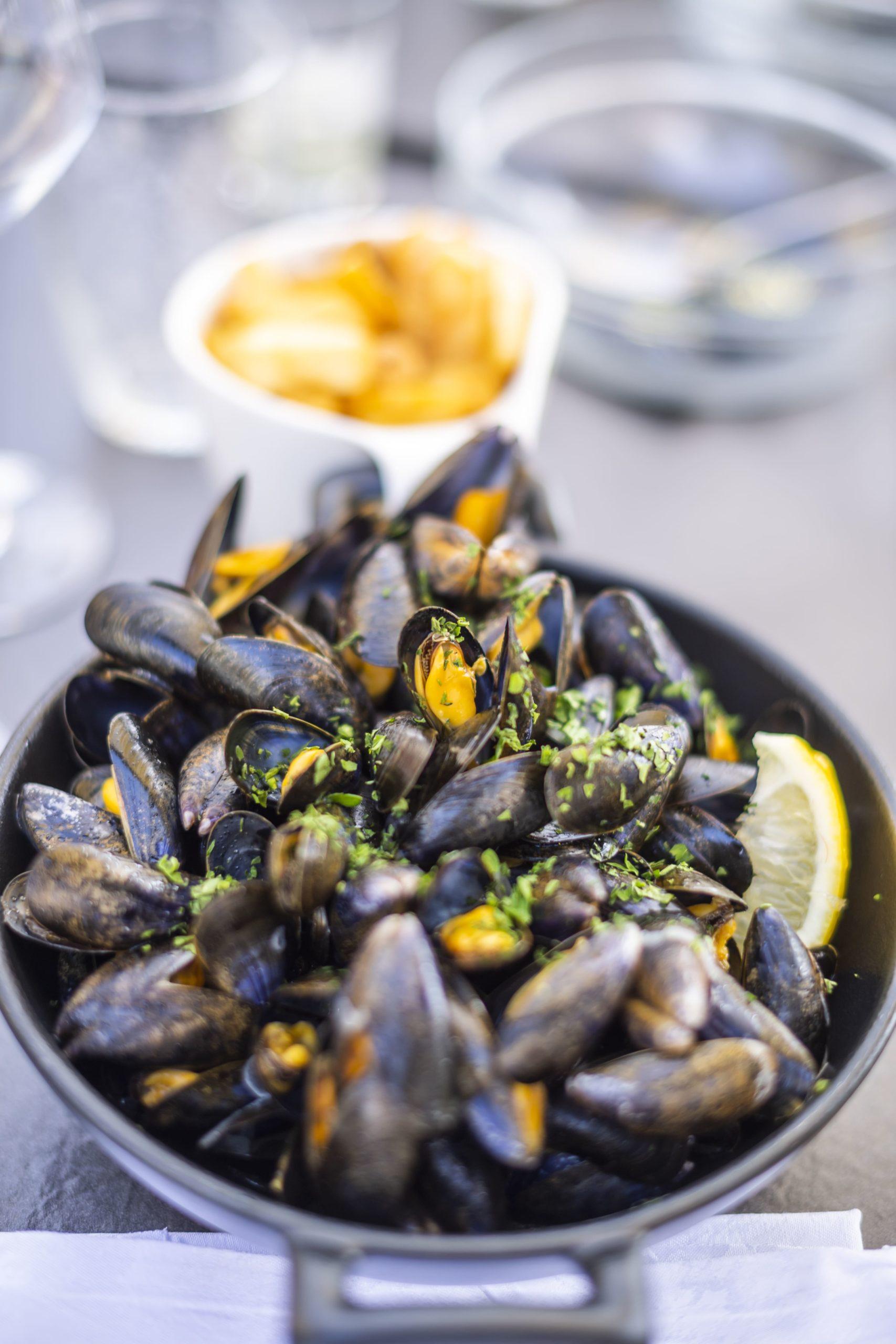 restaurant-equinoxe-activite-la-tranche-sur-mer-le-port-de-moricq-vendee-expansion.jpg
